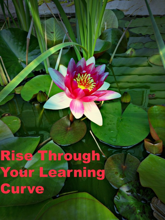 Rise Through Your Learning Curve